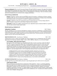 Senior Finance Executive Resume Download Vp Finance Cfo Early Stage Saas In New York Ny Resume