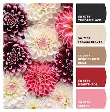 how to pick a color palette for your entire home happily ever