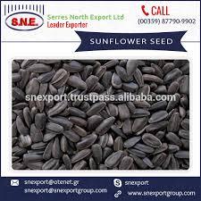 list manufacturers of organic black oil sunflower seeds buy
