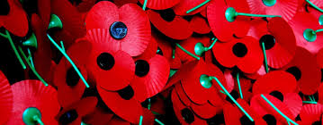how we remember the remembrance day the royal british legion