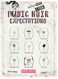 pubic hair style pics pubic hair styles encylopydia of lydia the record store