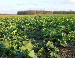 chambre agriculture ile de chambre agriculture idf 100 images chambres d agriculture