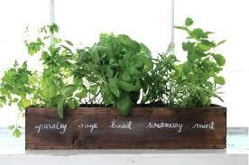 Window Sill Garden Inspiration Diy Window Herb Garden Greenhouse A Window Sill Herb Garden