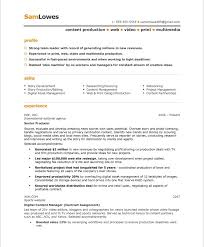 free resume exles free resume format content producer free resume sles blue sky resumes