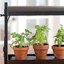 Indoor Herb Garden Light 254 Best Indoor Gardening Images On Pinterest Indoor Herbs