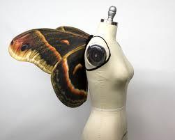 large swallowtail butterfly wings costume butterfly halloween