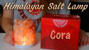 Himalayan Salt Lamp Levoit Cora Himalayan Salt Lamp Review U0026 Discount Code Youtube