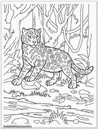 jungle animals coloring at pages snapsite me