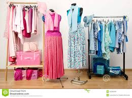 Wardrobe Clothing Wardrobe With Pink And Blue Clothes With On Two Mannequins