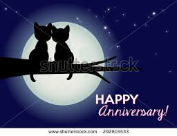 cat moon stock images royalty free images vectors