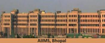 paper pattern of aiims aiims mbbs entrance exam pattern