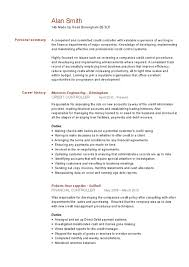 resume of financial controller made up resume it director free resume samples blue sky resumes