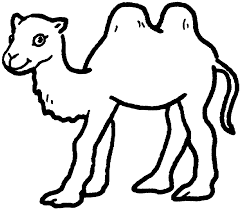 simple clipart camel pencil and in color simple clipart camel