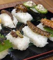 insecte cuisine recettes japonaises à base d insectes les insectes