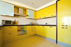 Kitchen Cabinet Textures 75 Modern Kitchen Designs Photo Gallery Designing Idea