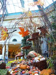 28 bellagio indoor garden top 10 free things in las vegas
