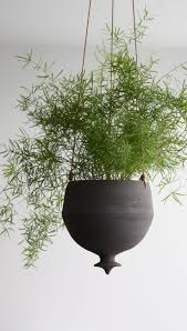 unique indoor planters 226 best images about indoors green on pinterest green plant