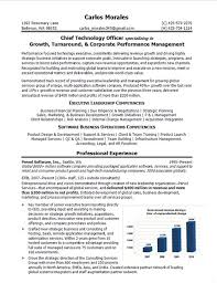 Value Statement Examples For Resumes by Download Cto Resume Examples Haadyaooverbayresort Com