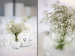 Bulk Baby S Breath Baby U0027s Breath U0026 Lace Wedding Franschhoek