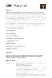 Sample Police Officer Resume by Police Officer Resume Samples