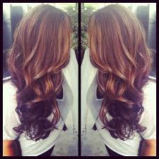 highlights and lowlights for light brown hair light brown highlights dark brown lowlights thick curls and long