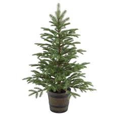 4 Christmas Tree With Lights by National Tree Company 4 Ft Norwegian Spruce Entrance Artificial