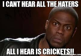 Crickets Meme - i cant hear all the haters all i hear is crickets meme kevin