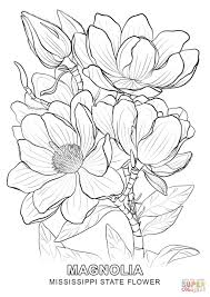 mississippi state flower coloring page free printable coloring pages