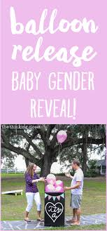 gender reveal balloons in a box our balloon release baby gender reveal it s a the thinking