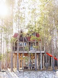 treehouse airstream and cabin available for rent
