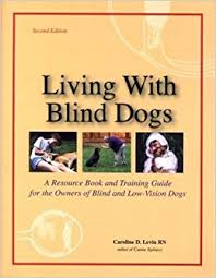 How Do Blind Dogs Know Where To Go How To Train Blind Dog Better Life