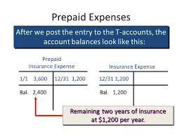 prepaid account adjustments financial statements and the quality of earnings