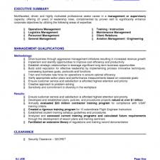 Resume Executive Summary Examples by Cover Letter Resume Example Summary Resume Summary Example For