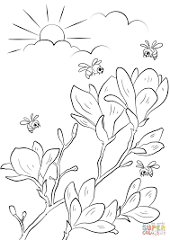 spring flowering branches coloring page free printable coloring