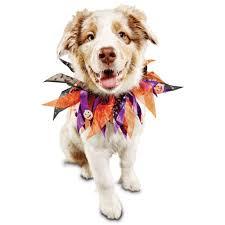 halloween spirit store locator bootique halloween party dog collar petco