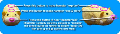 hamster button loactions instructions