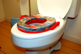 Potty Seat Or Potty Chair Cars Soft Potty Seat Baby N Toddler