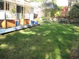 triyae com u003d dog backyard landscape ideas various design