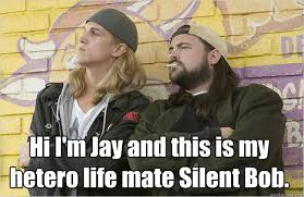 Jay And Silent Bob Meme - hi i m jay and this is my hetero life mate silent bob misc
