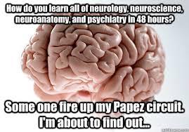 Neuroscience Meme - how do you learn all of neurology neuroscience neuroanatomy and