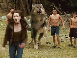 quileute tribe wolf pack and the twilight saga moon