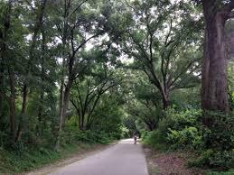Orlando Urban Trail Map by Little Econ Greenway Trail Cycling