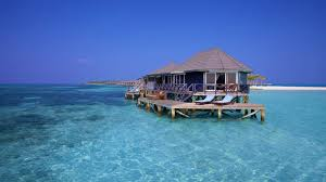 amazing images and photos of kuredu maldives