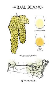 Ohio Winery Map by French Hybrid Wines From Chambourcin To Vidal Blanc