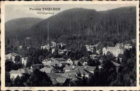 Ak Ansichtskarte Friedrichroda Blick Vom Herzogsweg Ak Friedrichroda Im Thüringer Wald Pension Excelsior Herzogsweg