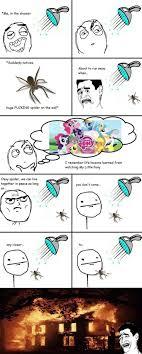 Shower Spider Meme - best 25 spider meme ideas on pinterest funny spider memes