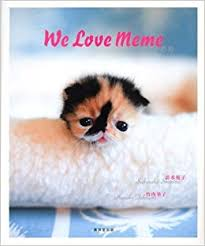 Who Are We Browsers Meme - we love meme 9784331513057 com books