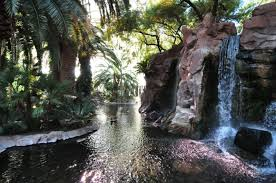 Nevada waterfalls images If you visit las vegas check out the waterfalls at quot the flamingo JPG