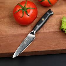 razor sharp kitchen knives sunnecko 3 5 fruit paring knife razor sharp blade damascus g10