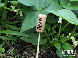 garden markers 15 cheap and easy diy plant markers for your garden attainable